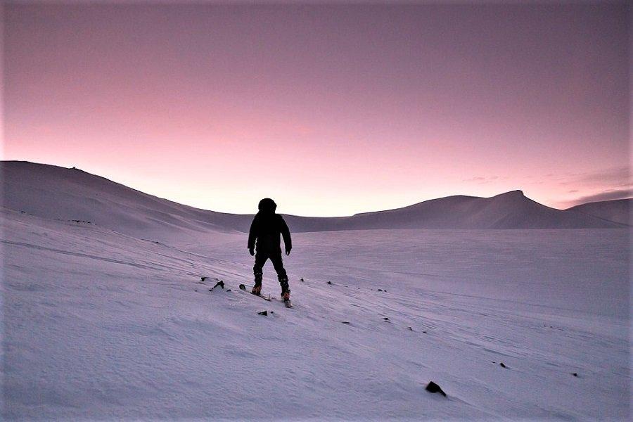 Розовый снег является признаком климатической катастрофы?