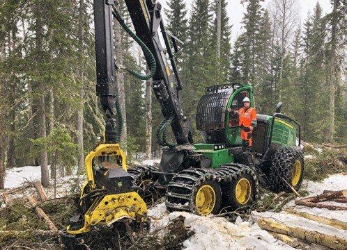 Segezha Group протестирует ЛесЕГАИС — новую для России систему контроля за лесным комплексом