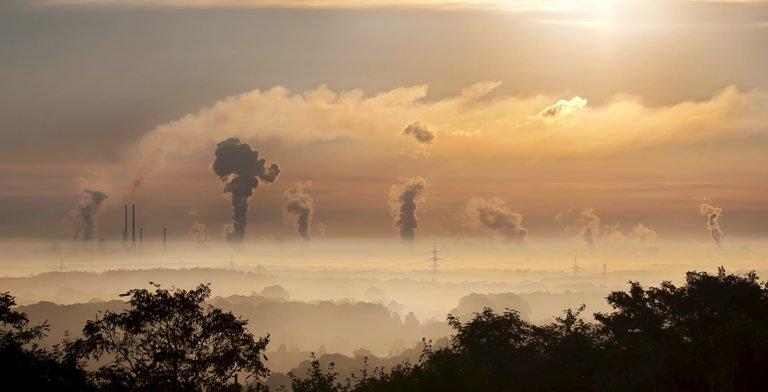 В России создадут 7 углеродных полигонов до конца текущего года