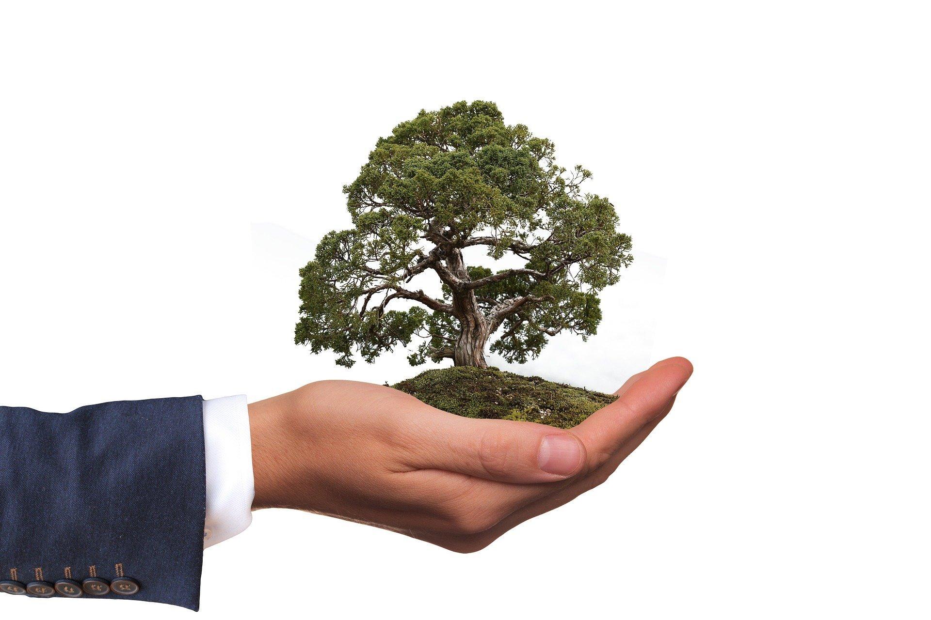 Корпорация Henkel за 10 лет улучшила показатели в области устойчивого развития