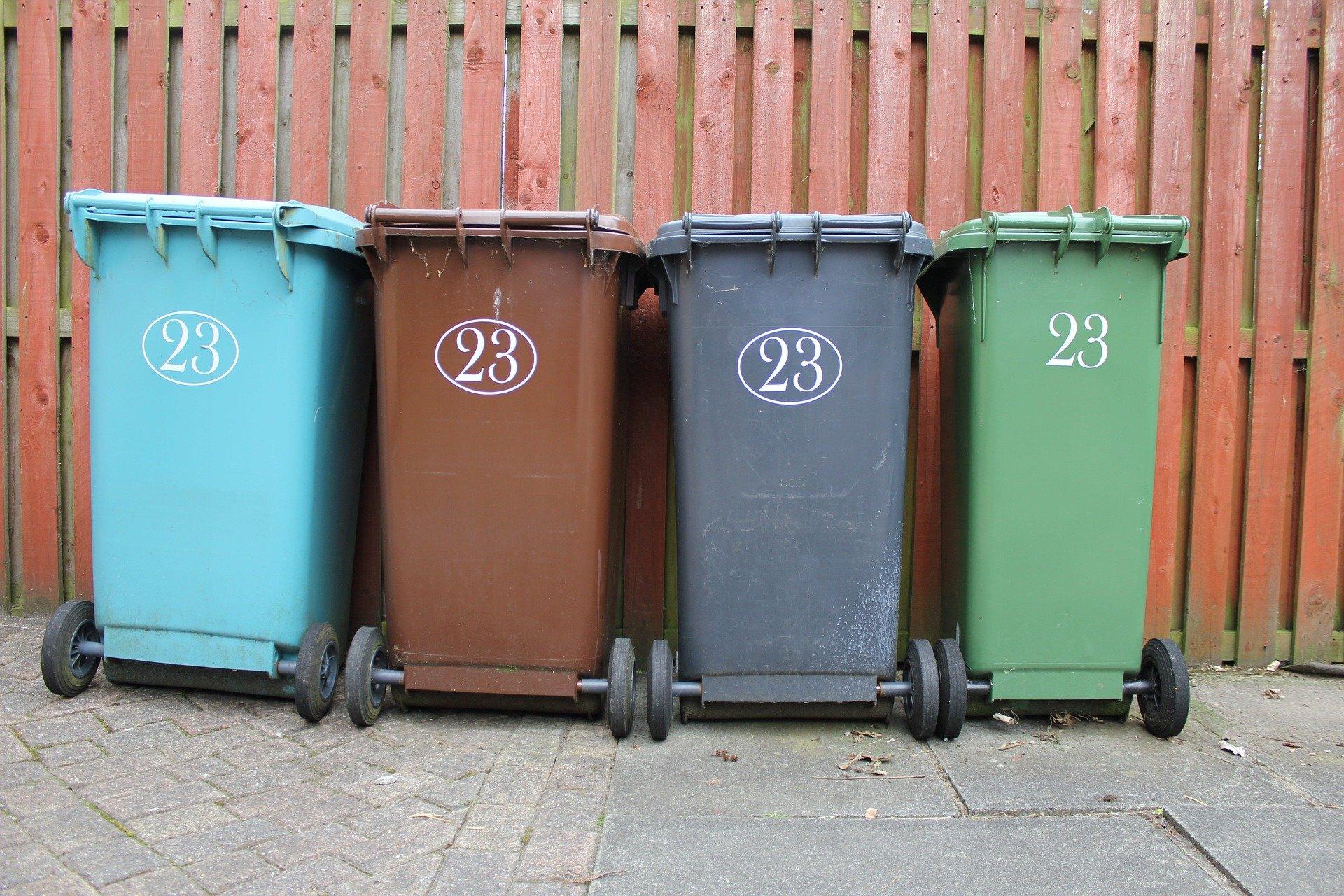 Минприроды поручили срочно найти средства на баки для сортировки мусора