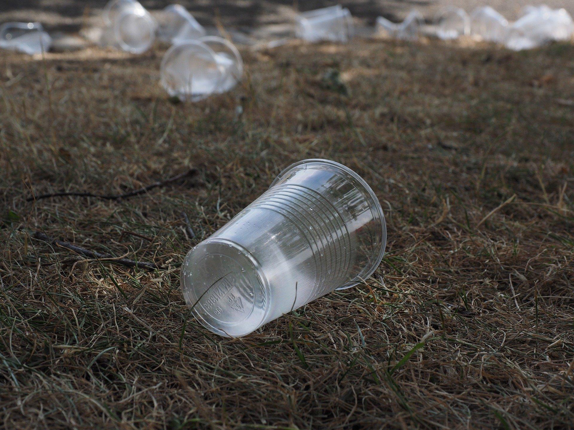 В России на переработку отправляют только треть отсортированных отходов